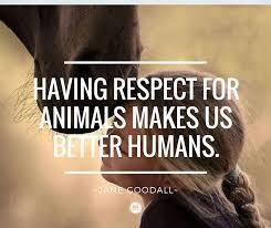 Respect for Animal - A Commandment Given to Humanity